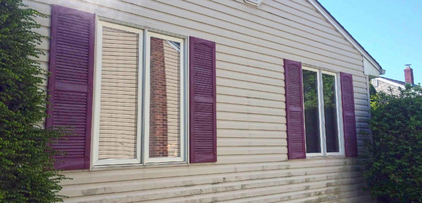 73301-mold-on-siding-house